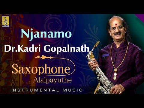 Njanamo - Thrilling Saxophone by Dr Gopalnath