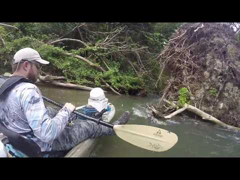 Two Days On The Eleven Point River