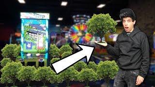 Every Arcade Ticket I Win Plants a Tree! #TeamTrees