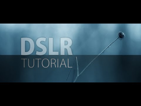 The ultimate Introduction to DSLR Filmmaking | Basic Tutorial