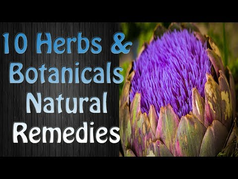 Herbs Used in Herbal Medicine and Natural Remedies - Natural Medicine Herbs