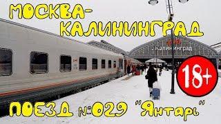 Поездка на поезде №029 Москва - Калининград (Янтарь). Обзор квартиры