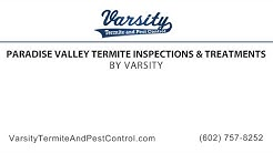 Paradise Valley Termite Inspections & Treatments | Varsity Termite & Pest Control