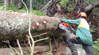 New professional Chainsaw STIHL MS 362-Tažba dreva