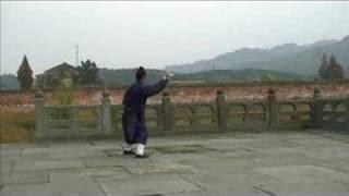 Wudang Taiji Sword (武当太极剑) - Master Yuan Xiu Gang (袁修刚)
