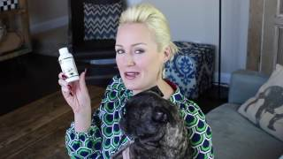 StressNoMore Liquid Calm-Aid for Dogs and Cats