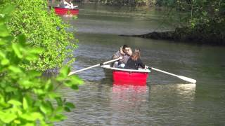 Rowing a boat apparently requires mad skills