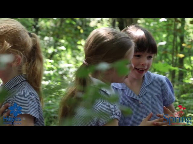 Outdoor Learning at Hayes Primary School