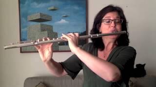 Leonardo Martinelli - Solo para flauta (Sarah Hornsby)