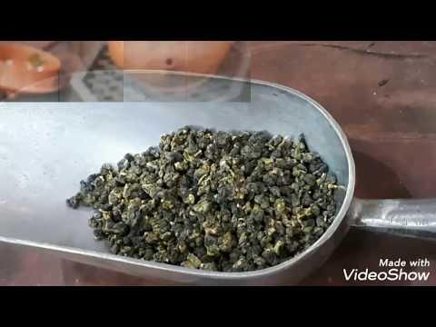 高海拔阿里山烏龍茶