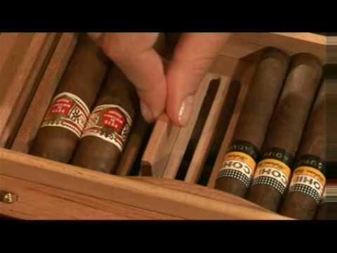 Humidor Einrichten adorini zigarren humidor guide alle infos für humidore einrichtung