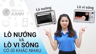 Lò nướng và lò vi sóng có gì khác nhau? • Điện máy XANH