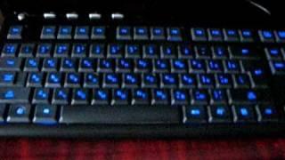 Краткий обзор USB-клавиатуры A4Tech KL-126