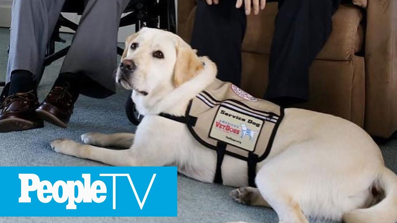 George H.W. Bush's Service Dog Sully Guards His Coffin In Poignant Photo | PeopleTV