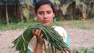 Long Bean Stir Fry Recipe | Village Style Green Beans Fried Cooking By Street Village Food