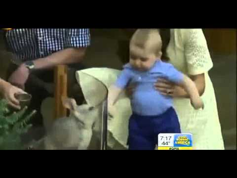prince-george-easter-at-australian-zoo-video