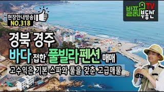 경북 경주 고급 풀빌라 펜션매매 전객실 동해바다 전망 …