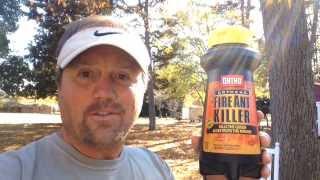 Ortho Orthene Fire Ant Killer ~ Steve's Reviews