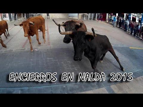 Encierro de reses bravas Nalda 2015