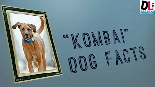 """KOMBAI""INDIAN OLDEST DOG BREED."