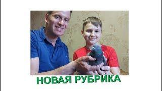 """НОВАЯ РУБРИКА """"В гостях у Владислава и его животных"""""""