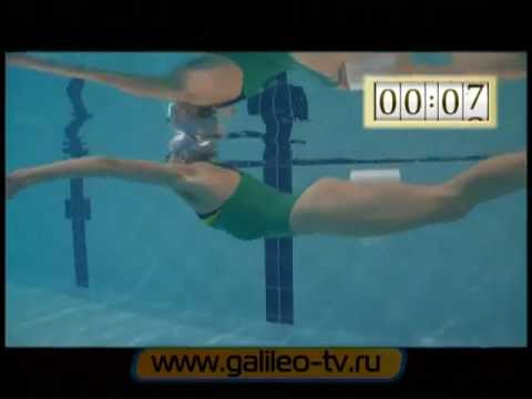 Галилео | Плавание