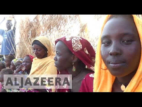 Nigerian refugees in Niger struggle amid scare resources