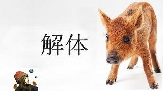 猪解体「遺体から食肉へと変わってゆく」ありがとう|【猪猟3】Wild boar