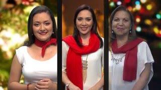 Saludo Navideño Televisión Legislativa 2
