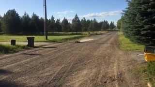 Losi XXL-2 gas monster truck crash