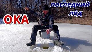 КРУПНЯК РВЁТ ЛЕСКУ Рыбалка на ОКЕ перед ледоходом 2021