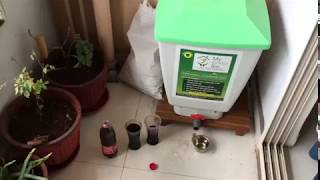 My green bin compost tea