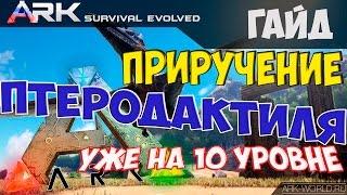 ARK Survival Evolved Приручение Птеродактиля на 10 уровне!