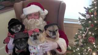 Merry Christmas From Pugs And Kisses!