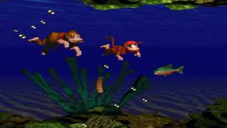 Donkey Kong Country SNES Music   Aquatic Ambienc