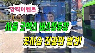 울 아들이~ 서울 코엑스 정류장 버스타려고 서있다가 *…