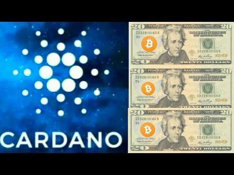 $20 Cardano ADA Moon By 2022 Bitcoin Halving Google Trends Interest Spike!