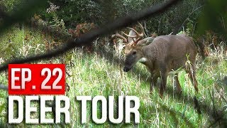 Bucks SPARRING at 5 YARDS, GROUND HUNTING Public Land - DEER TOUR E22