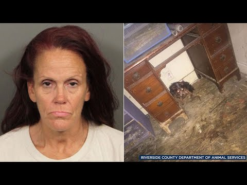 Photos show conditions of Coachella puppy dump suspect's home | ABC7