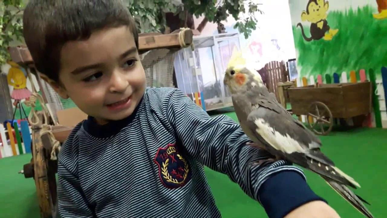 zooland Bakı ( зооланд Баку )