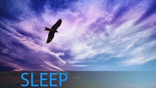 8 Hour Meditation Sleep: Dream Music, Delta Waves, Meditation Music, Soft Music, Sleep Song ☯533