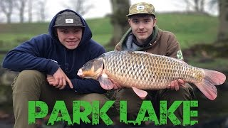 URBAN CARP FISHING: The Park Lake