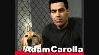 Adam Carolla - Money Or Happy?