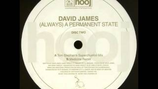 David James - (Always) A Permanent State (Tom Stephan