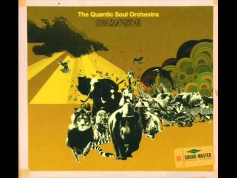 Quantic Soul Orchestra, The - She Said What?