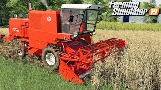 Żniwa Bizonem - Farming Simulator 19 | #24