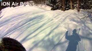 skishoeing and skijoring