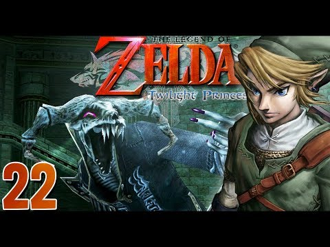 POE PROBLEM HERE! Let's Play The Legend of Zelda: Twilight Princess HD w/ ShadyPenguinn [22]