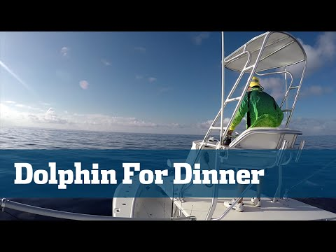 Dolphin Fishing Trolling Offshore Weedlines - Florida Sport Fishing TV