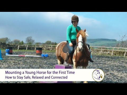 Mounting A Young Horse For The First Time With Clicker Training | How To Stay Safe And Connected